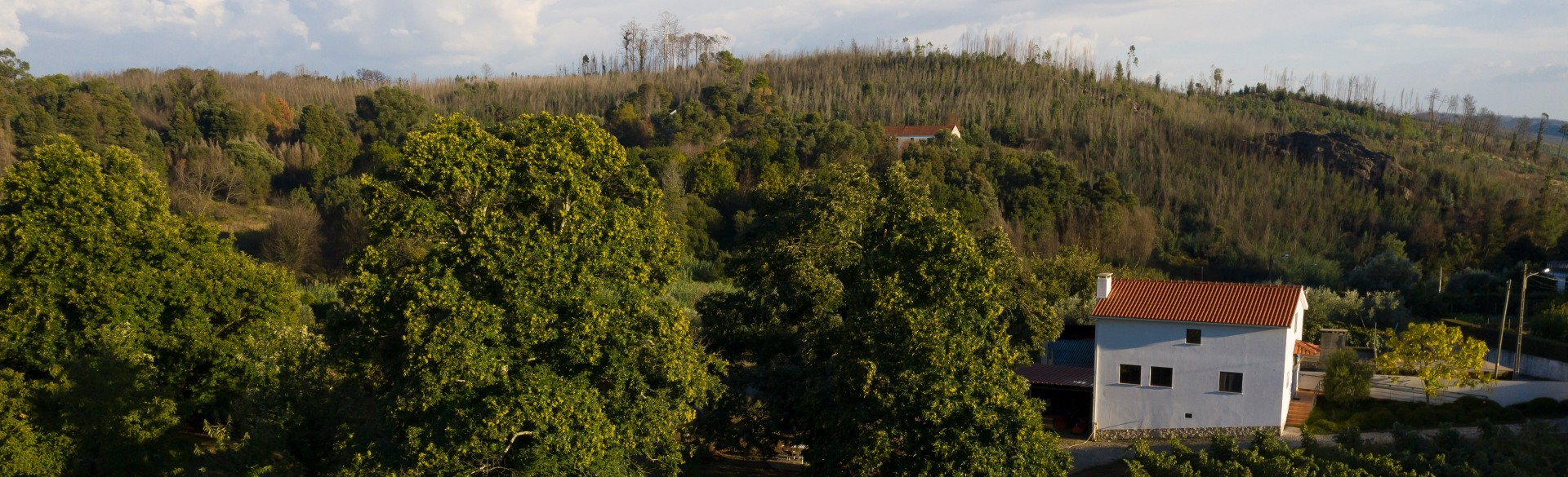 Quinta do Sobral - Solar