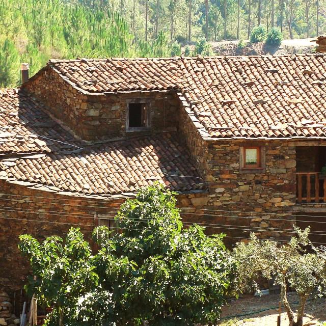 A Casa da Natália