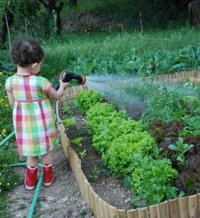 Organic Garden Workshop With Accommodation